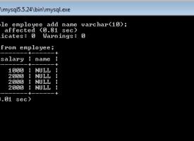 [MySQL Tutorial 7] Altering Table