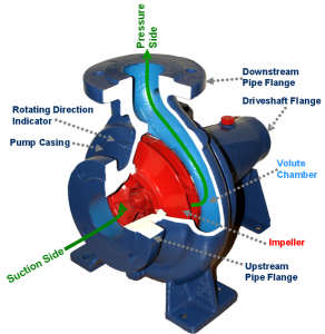 Cross-section of a centrifugal pump