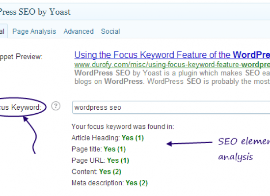 Using the Focus Keyword Feature of the WordPress SEO Plugin by Yoast