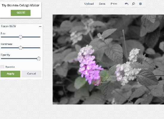 Top 5 Photo Editing Tools On Google Chrome Store