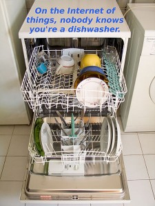 Dishwasher on the Internet!
