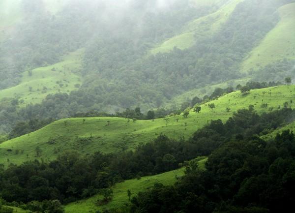 5-Offbeat-Places-You-Can-Visit-in-Karnataka-kudremukh