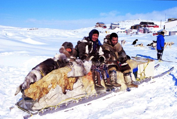 6-differences-between-the-arctic-and-antarctic-regions-population-arctic