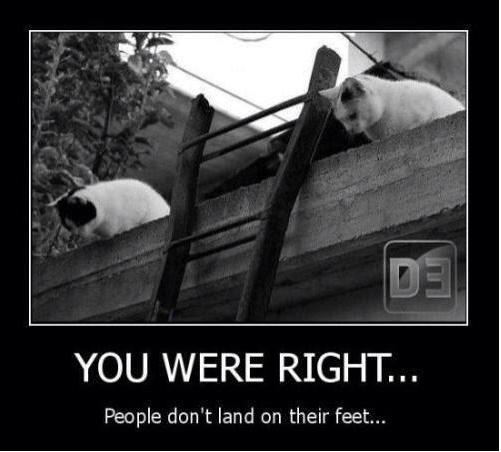naughty-cats3