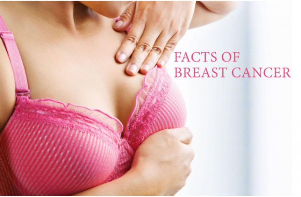 breasts-facts